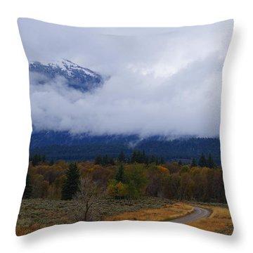 Fall Season's Last Stand Throw Pillow