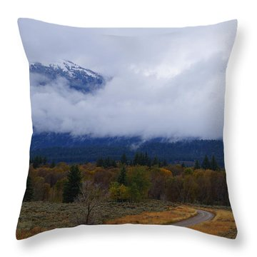 Fall Season's Last Stand Throw Pillow