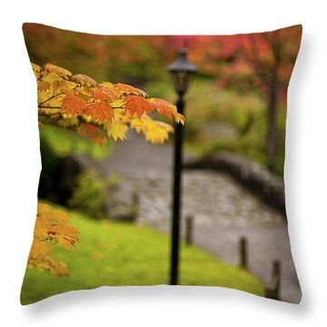 Fall Serenity Throw Pillow by Mike Reid