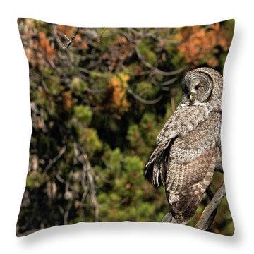 Fall Splendor  Throw Pillow
