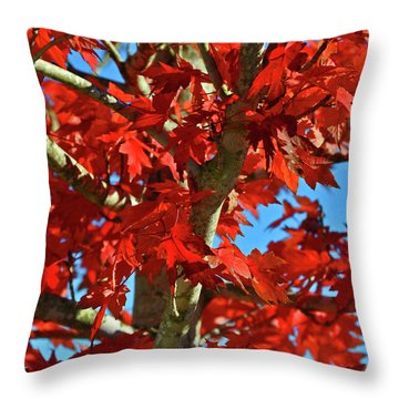 Fall Stars Throw Pillow