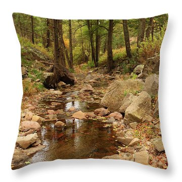 Fall Stream And Rocks Throw Pillow by Roena King