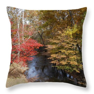Fall Transition Throw Pillow by Eric Liller