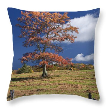 Fall Tree Throw Pillow