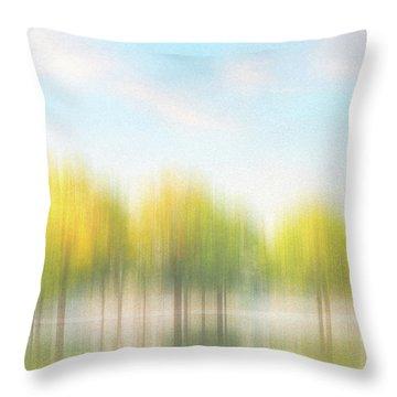 Fall Trees On Flooded Lake Throw Pillow