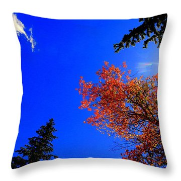 Throw Pillow featuring the photograph Fall Up by Karen Shackles