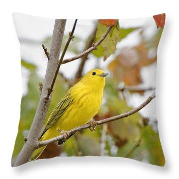 Fall Warbler Throw Pillow