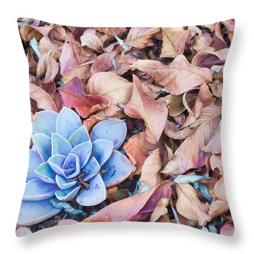 Throw Pillow featuring the photograph Fallen Autumn Leaves by Ram Vasudev