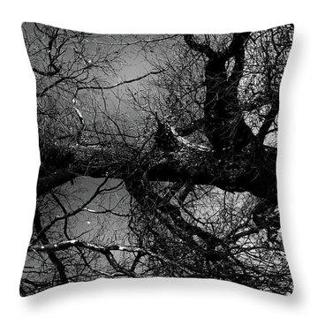 Fallen Dark Wood Forest Throw Pillow