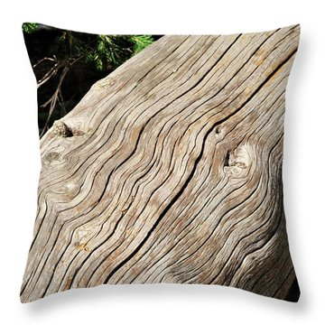 Fallen Fir Throw Pillow