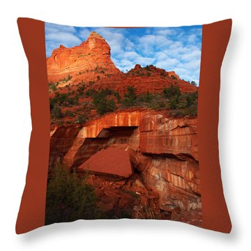 Throw Pillow featuring the photograph Fallen by James Peterson