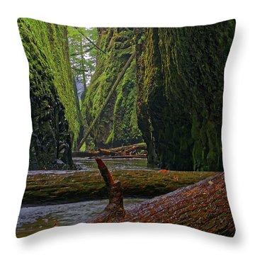 Throw Pillow featuring the photograph Fallen by Jonathan Davison