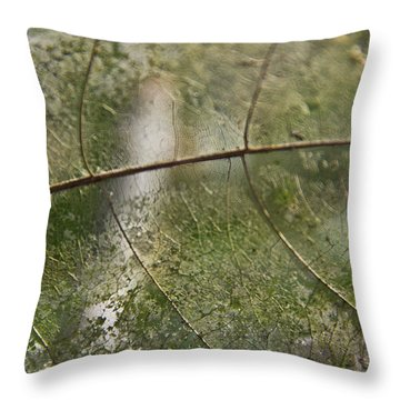Throw Pillow featuring the photograph fallen Leaf by Debbie Cundy