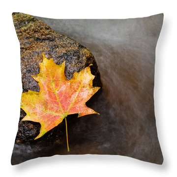 Fall Colors Throw Pillows