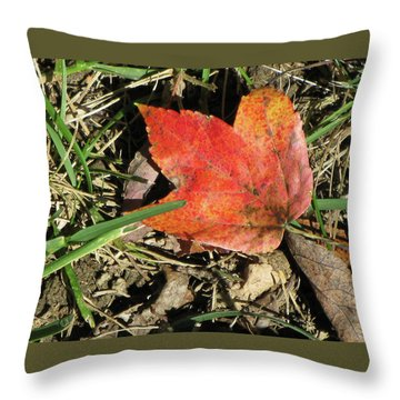Fallen Leaf Throw Pillow by Michele Wilson