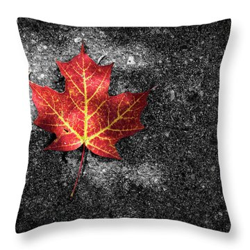 Fallen Leaf Throw Pillow