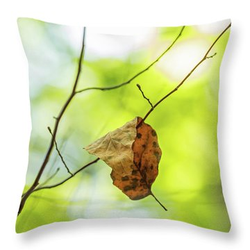 Fallen Leaf On Green Throw Pillow