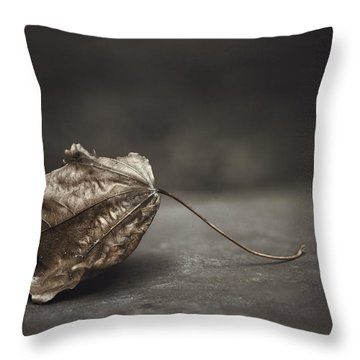 Seasons Change Throw Pillows