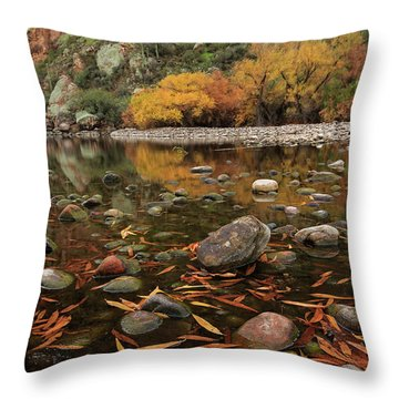 Fallen Leaves Along The River Throw Pillow by Sue Cullumber