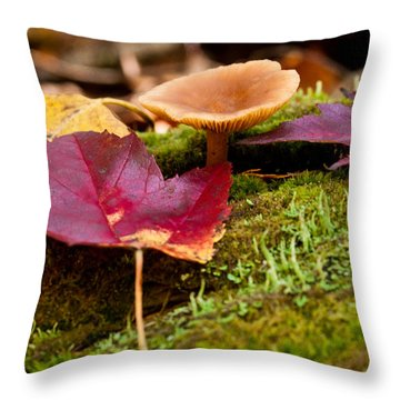 Fallen Leaves And Mushrooms Throw Pillow