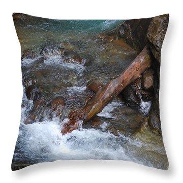 Fallen Log Throw Pillow