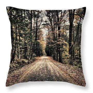 Fallen Road Throw Pillow by Nathan Larson