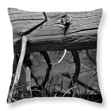 Throw Pillow featuring the photograph Fallen Spruce by Ron Cline