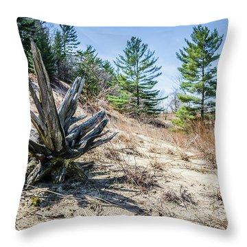 Fallen Tree At Warren Dunes Throw Pillow