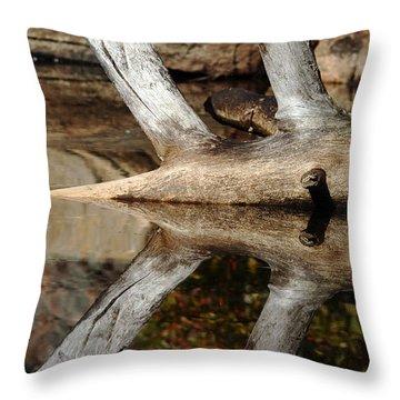 Fallen Tree Mirror Image Throw Pillow by Debbie Oppermann