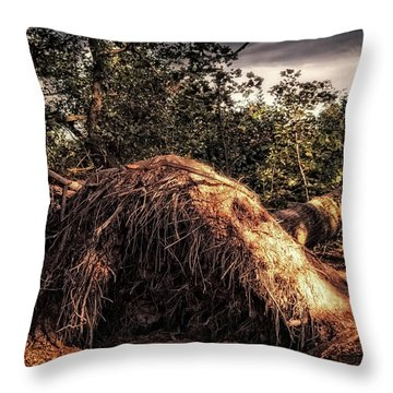 Fallen Throw Pillow by Wim Lanclus