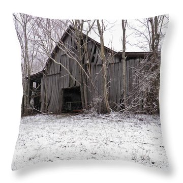 Falling Barn Throw Pillow by Nick Kirby