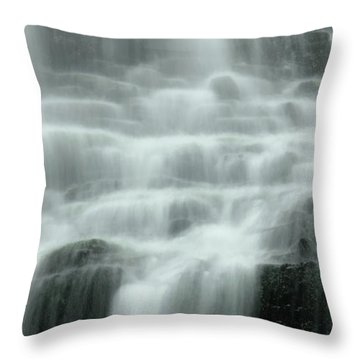 Falling Throw Pillow by Don Schwartz