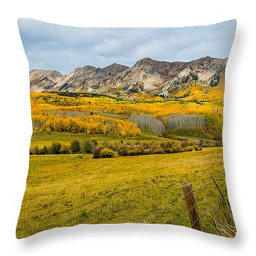 Falling For Anthracite Throw Pillow