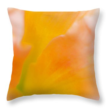 Falling-in Throw Pillow