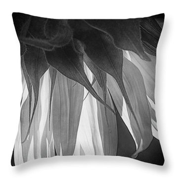 Falling Monochrome  Throw Pillow