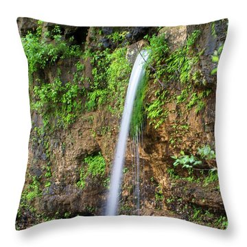 Falling Spring Throw Pillow by Marty Koch