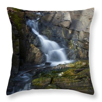 Throw Pillow featuring the photograph Falling Waters In February #2 by Jeff Severson