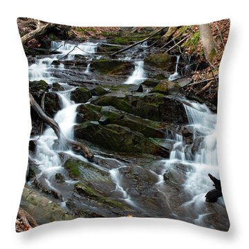 Falling Waters In February Throw Pillow by Jeff Severson