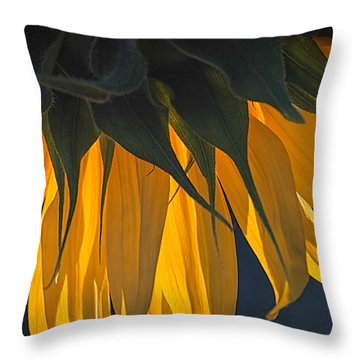 Falling Yellow  Throw Pillow