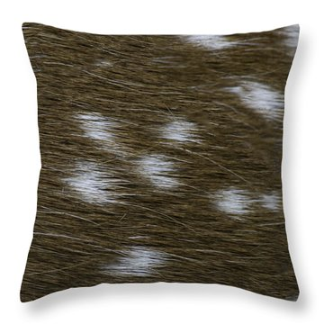 Fallow Deer  Throw Pillow by Linda Geiger