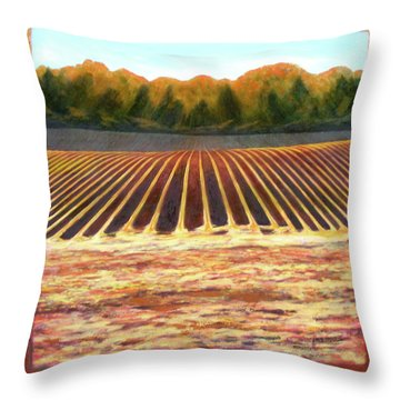 Fallow Field Throw Pillow