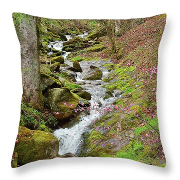 Falls Accented In Pink Throw Pillow