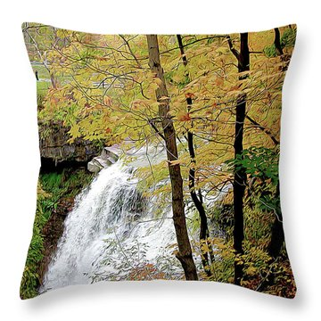 Falls In Autumn Throw Pillow