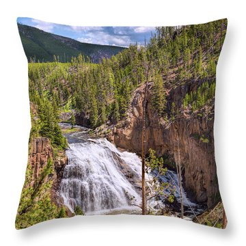 Throw Pillow featuring the photograph Falls Of The Gibbon by John M Bailey