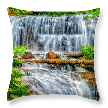 Throw Pillow featuring the photograph Falls On Sable Creek by Nick Zelinsky
