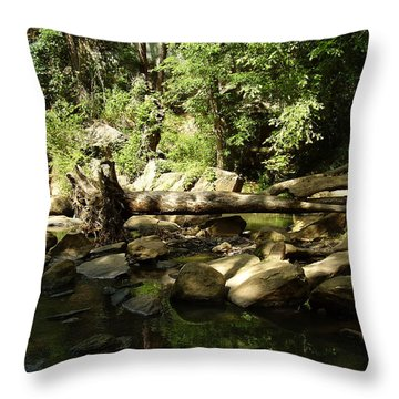 Falls Park Throw Pillow by Flavia Westerwelle