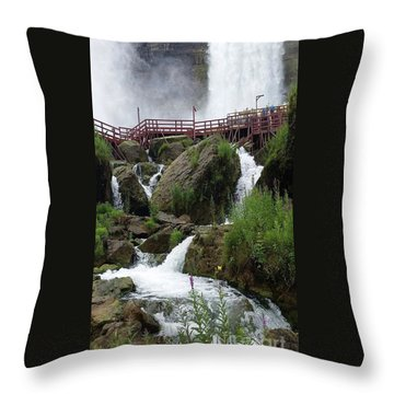 Falls Throw Pillow by Raymond Earley