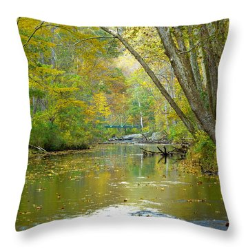 Falls Road Bridge Over The Gunpowder Falls Throw Pillow by Donald C Morgan