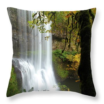 Falls Though The Trees Throw Pillow