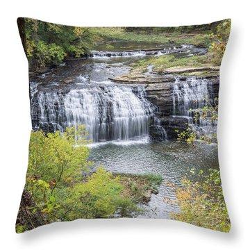 Falls Through The Trees Throw Pillow